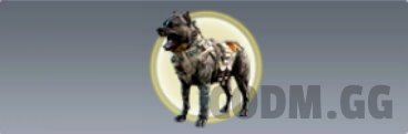 K9 Unit Operator Skill in Call of Duty Mobile